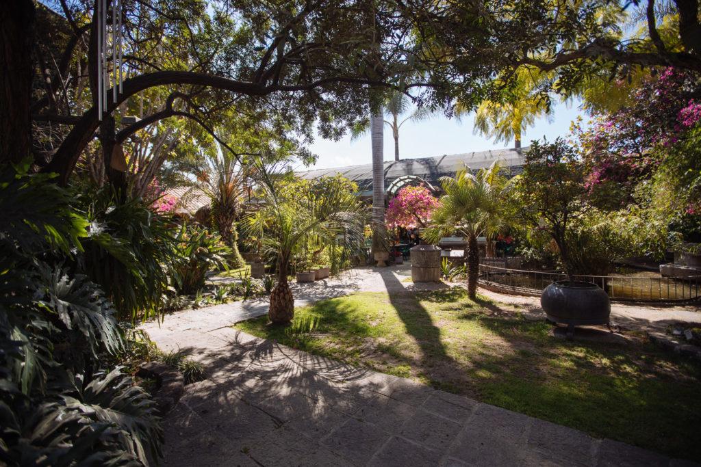 Garten im Las Calandrias