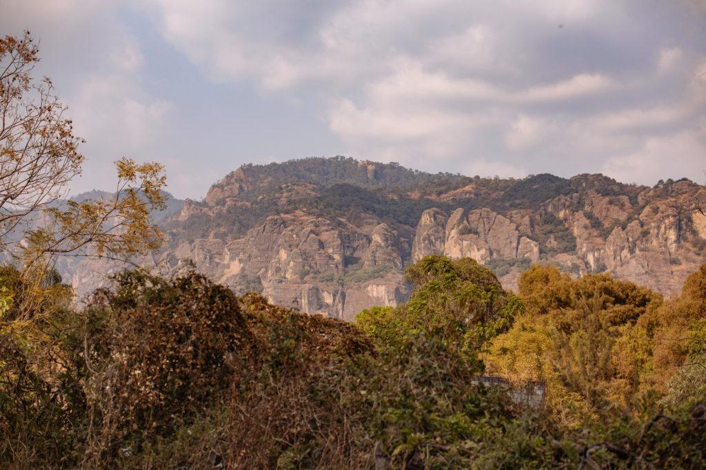 Berge bei Tepoztlán mit Bäumen davor