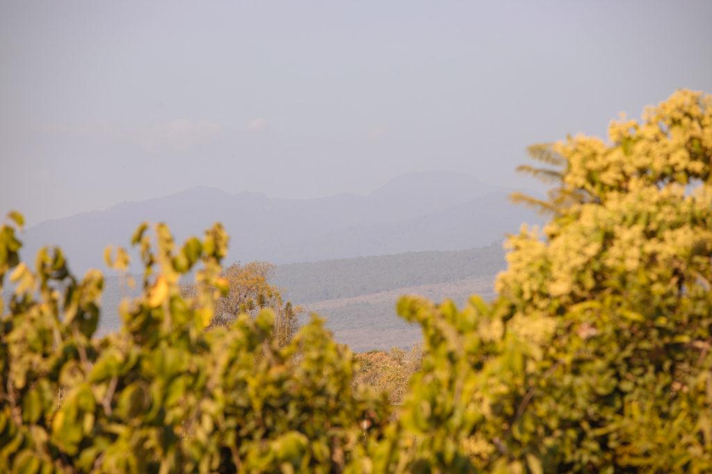 Blick von der Terrasse in Finca La Casona, Richtung Berge