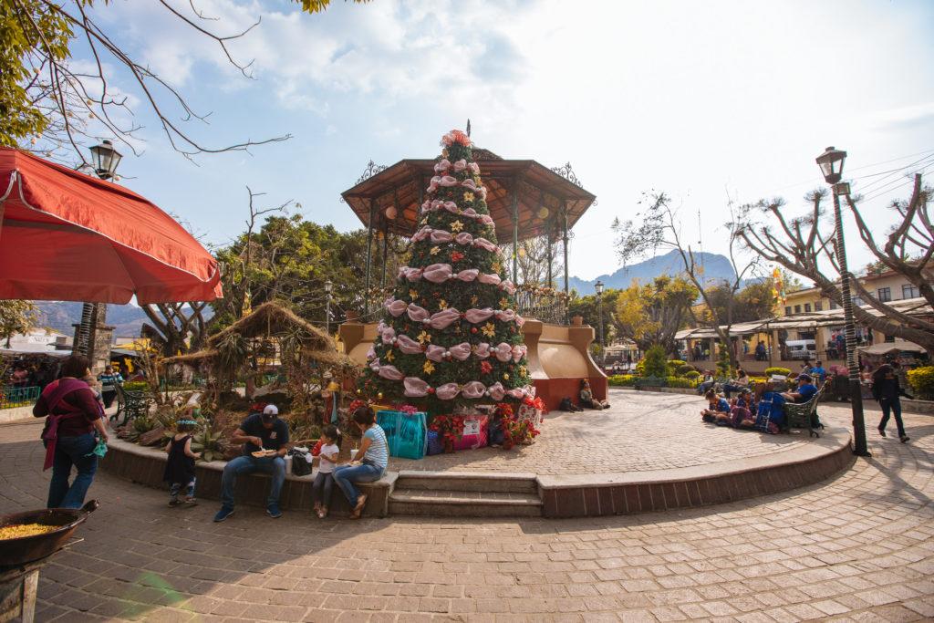 Weihnachtsbaum und Chinelo am zócalo von Tepoztlán