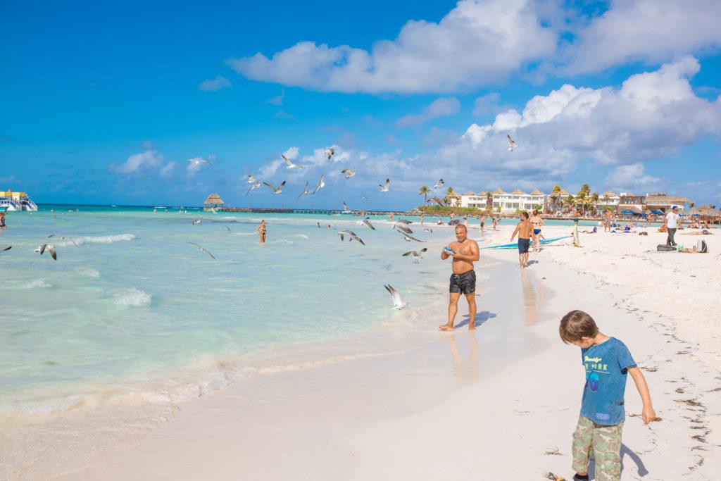 Möwenfütterer am Strand
