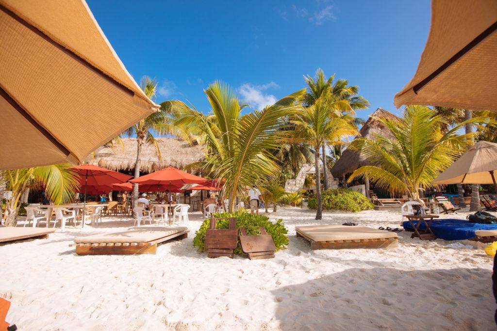 Palmen, Sonnenschirme von der Strandliege des Na Balam aus