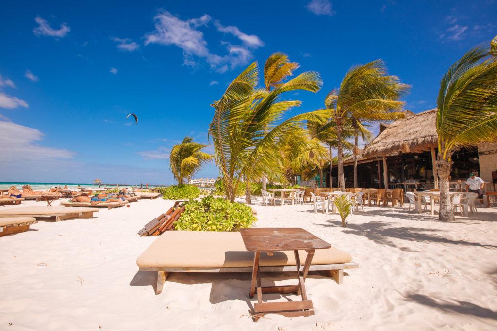 Strand mit gerüffelten Palmen und Kitesurfer