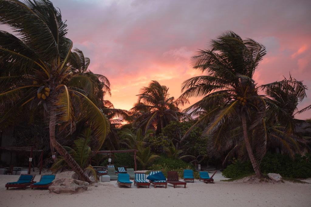 Sonnenuntergang über den Palmen vor Playa Xcanan