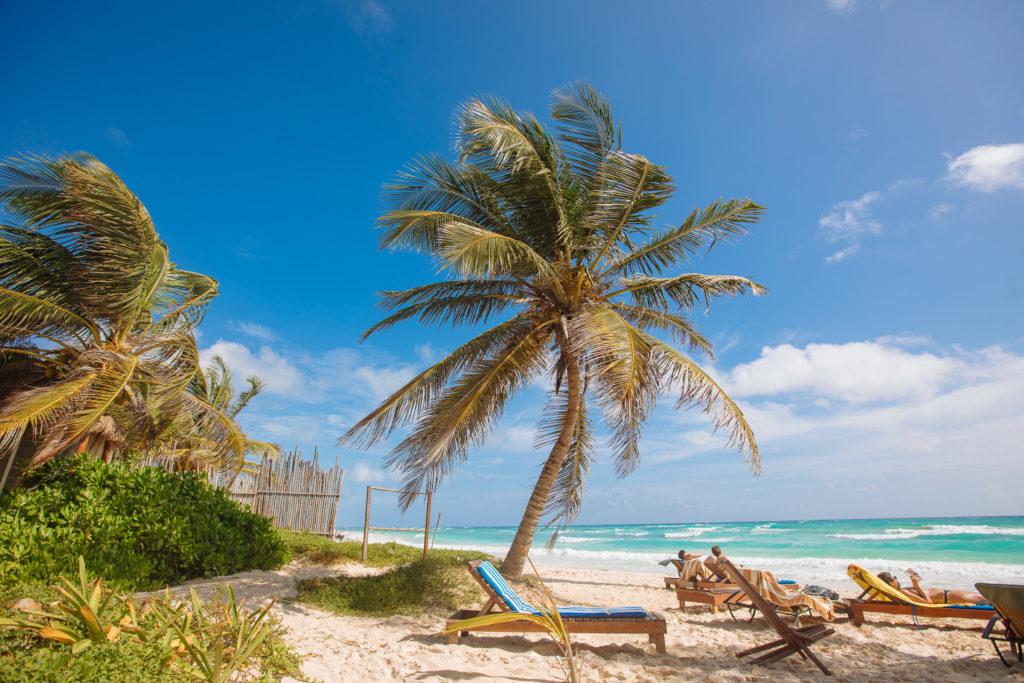 Strandliegen und Palmen bei Playa Xcanan in Tulum