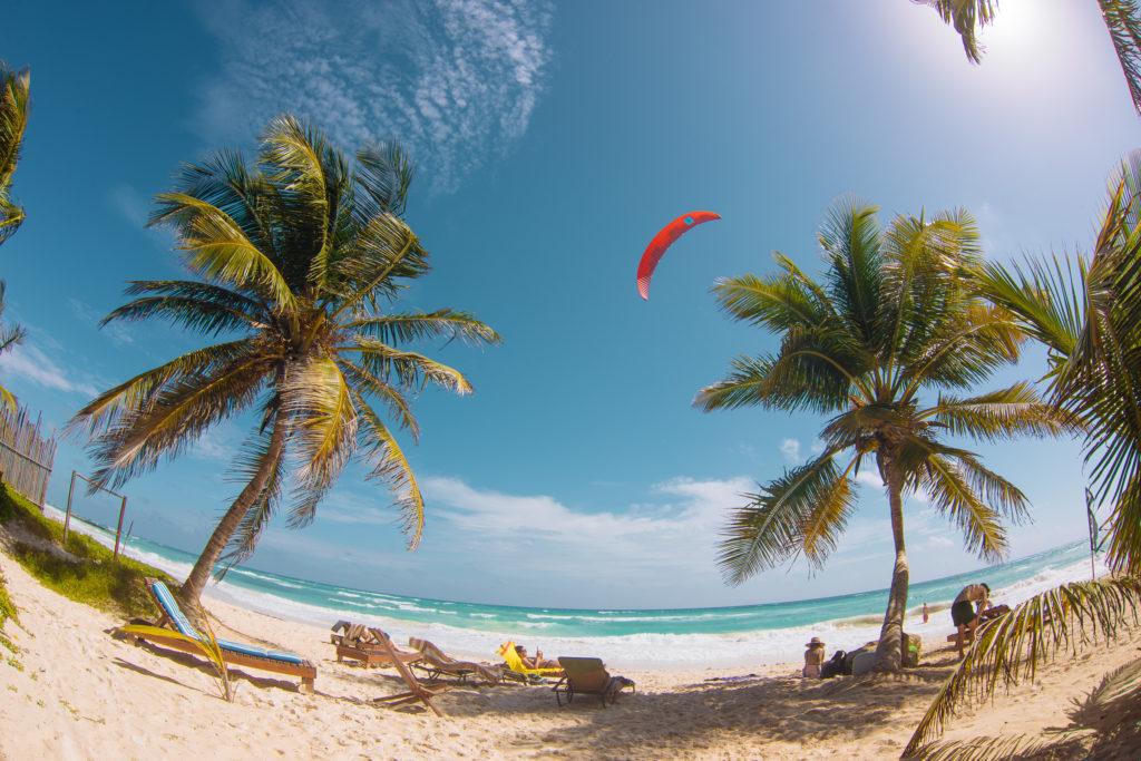 Roter Kite zwischen zwei Palmen mit Fisheye am Strand