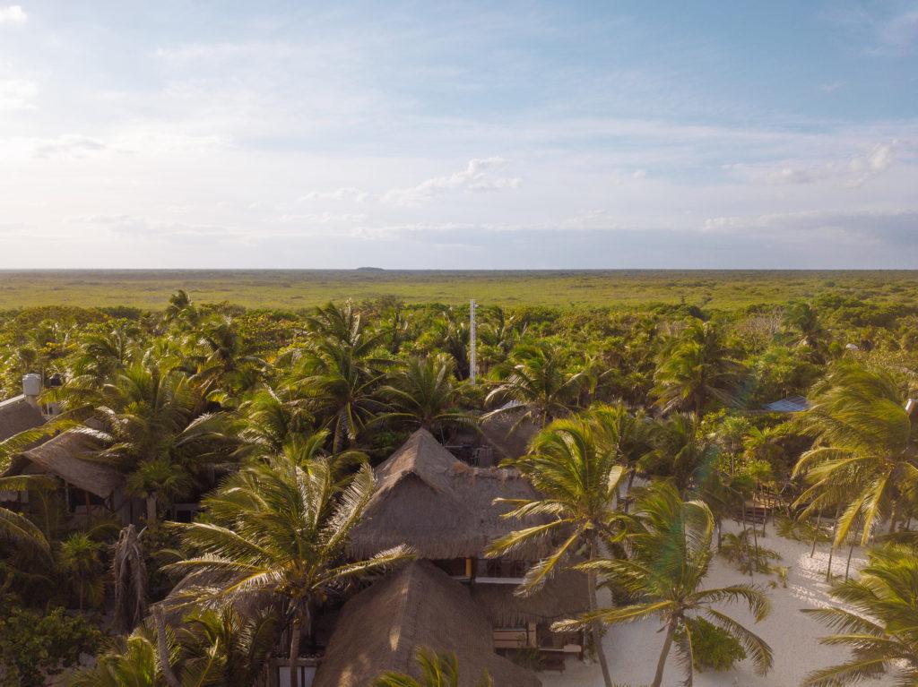 Weit und breit nur Dschungel auf Yucatan