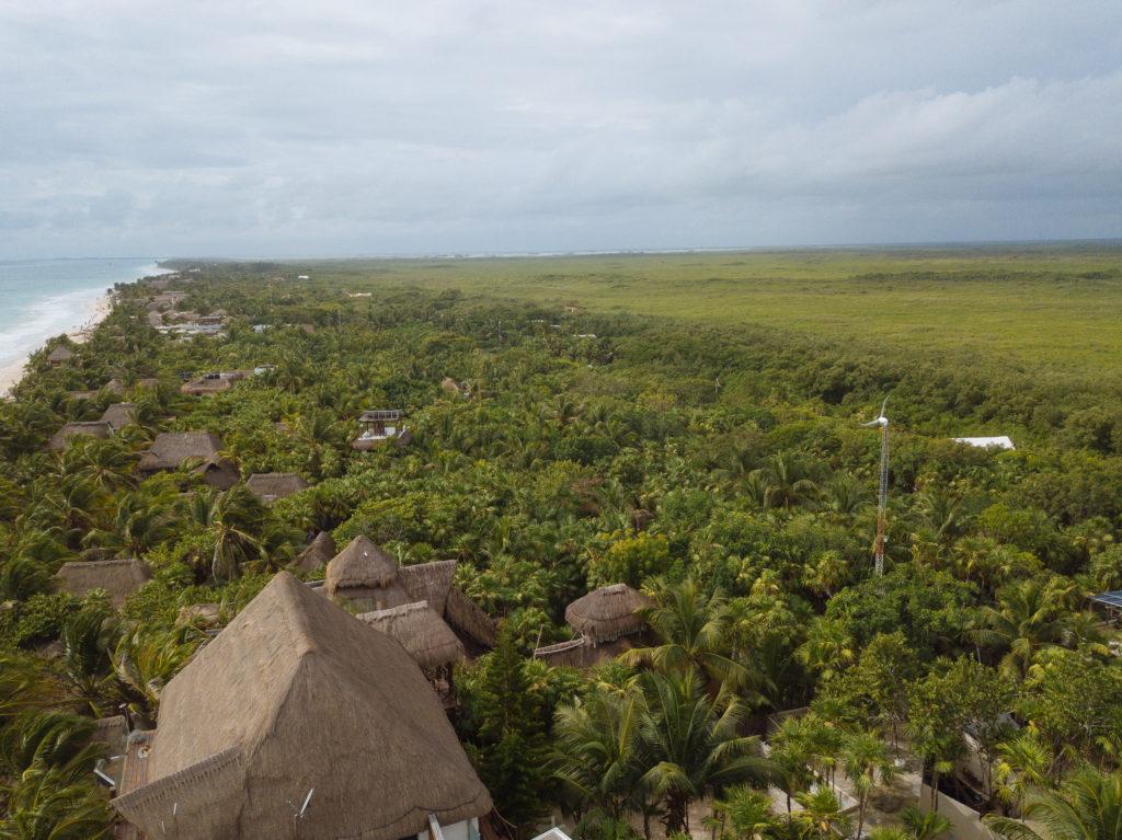 Sicht über cabañas und Dschungel Richtung Sian Ka'an