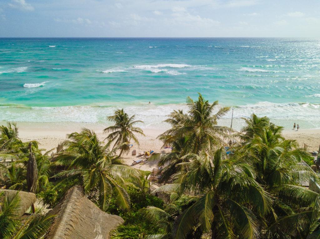 Palmen der Playa Xcanan mit Strand und Meer von oben