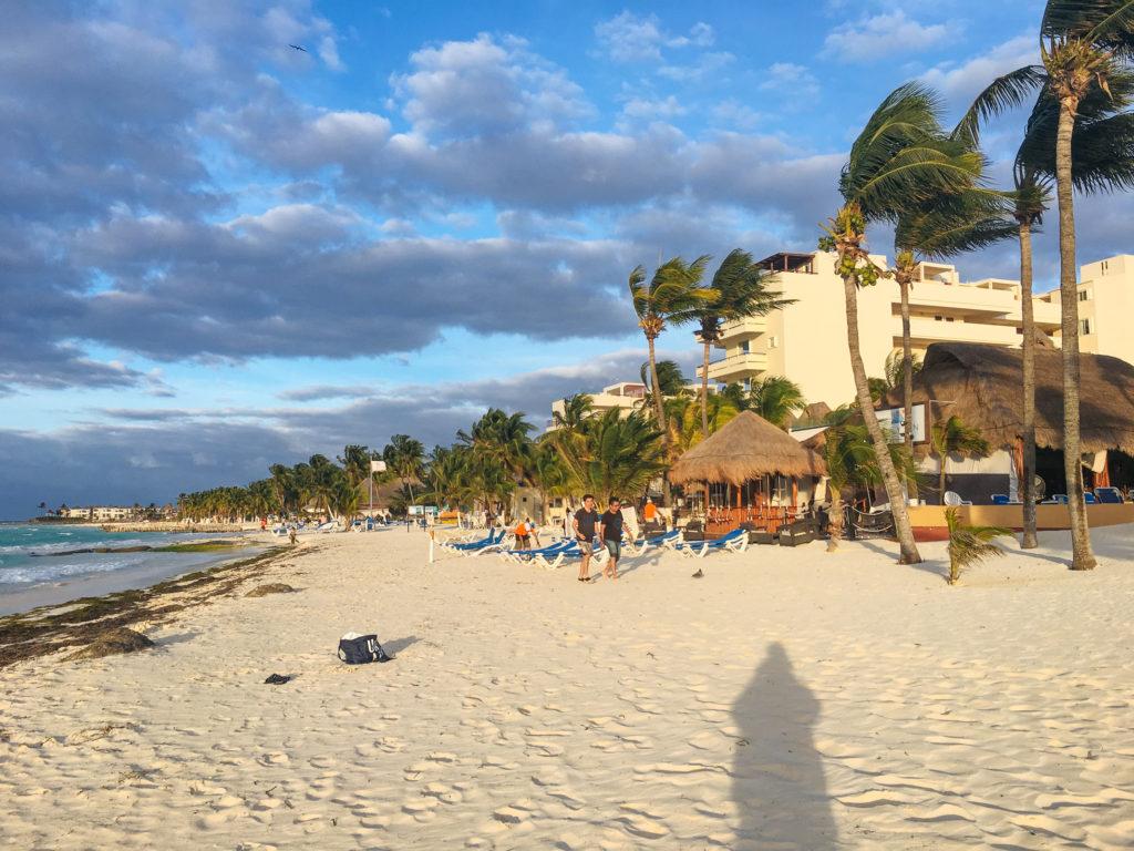 Abendsonne und windgepeitschte Palmen an der Playa Norte