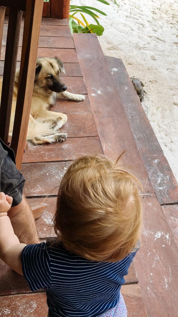 Sohnemann mit Hund